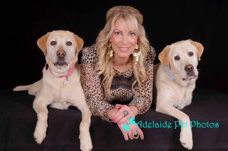 Labrador pet photo by Adelaide Pet Photos.